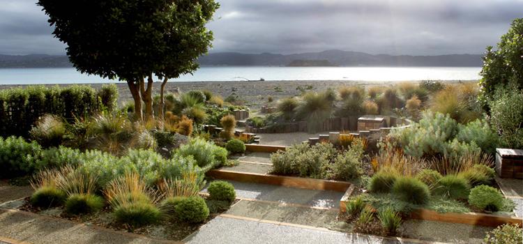 Planting your garden for best effect paul cameron for Landscape design nz
